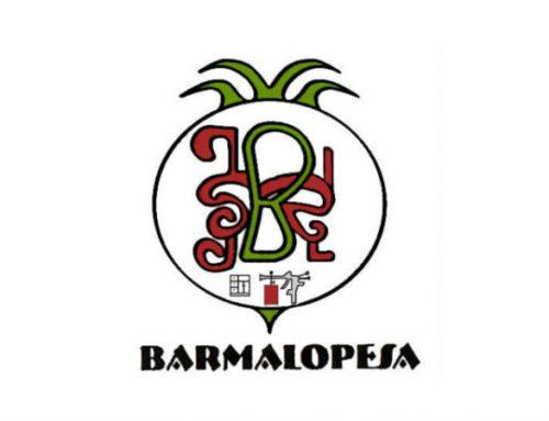 ¡Bienvenido a Barmalopesa!
