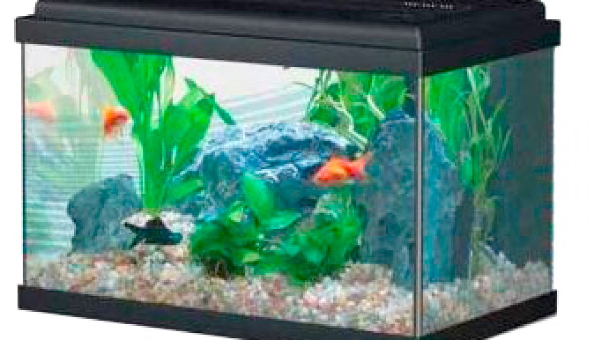 silicona para acuarios